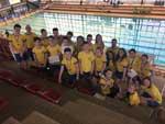 Plavecké soutěže